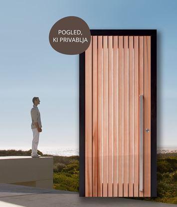 Lesena vhodna vrata s steklom oz. stransko svetlobo PANORAMA