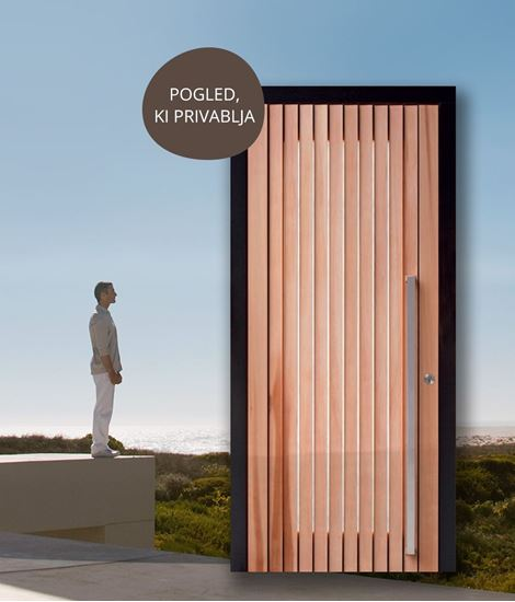 Lesena vhodna vrata s steklom PANORAMA